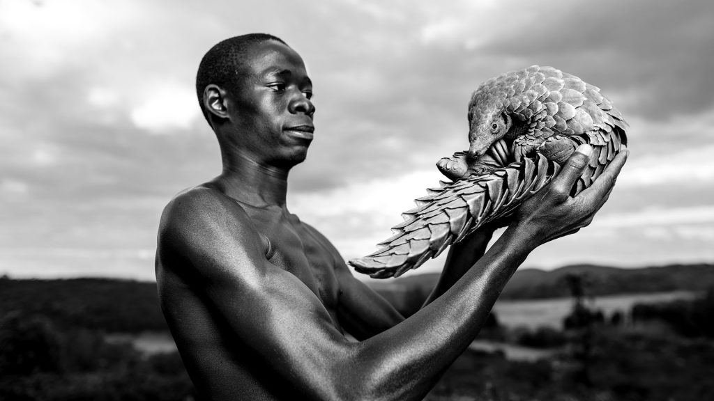 Adrian Steirn ©PHOTOGRAPHERS AGAINST WILDLIFE CRIME (TM)